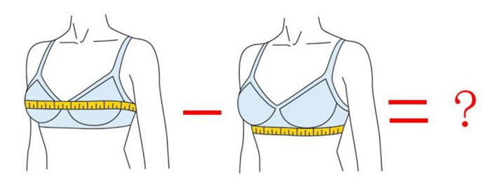 Размер груди - калькулятор размеров